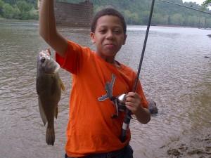 Castle fish 8